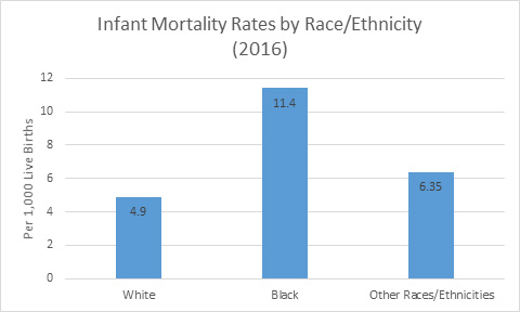 Infant Mortality Rates by Race/Ethnicity